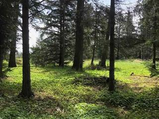 Lot for sale in Queen Charlotte - Rural, Prince Rupert, 0 School Road, 262484204   Realtylink.org