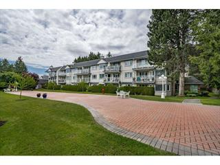 Apartment for sale in Sunnyside Park Surrey, Surrey, South Surrey White Rock, 206 13959 16 Avenue, 262508693 | Realtylink.org