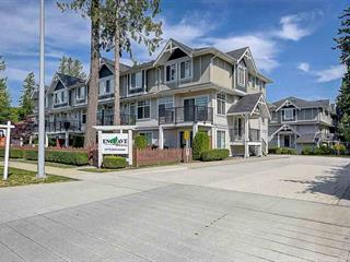 Townhouse for sale in Panorama Ridge, Surrey, Surrey, 5 12775 63 Avenue, 262521485 | Realtylink.org