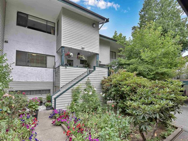 Townhouse for sale in Queen Mary Park Surrey, Surrey, Surrey, 31 12045 93a Avenue, 262625235 | Realtylink.org