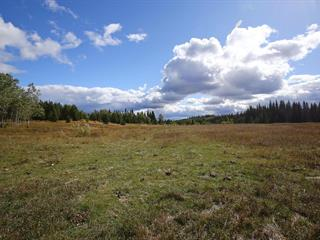Lot for sale in 150 Mile House, Williams Lake, 2850 Likely Road, 262640644   Realtylink.org