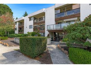 Apartment for sale in White Rock, South Surrey White Rock, 206 1526 George Street, 262639809 | Realtylink.org