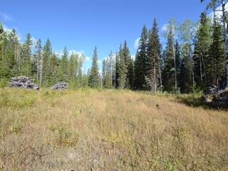 Lot for sale in Horsefly, Williams Lake, Williams Lake, 3787 Horsefly Road, 262633144 | Realtylink.org