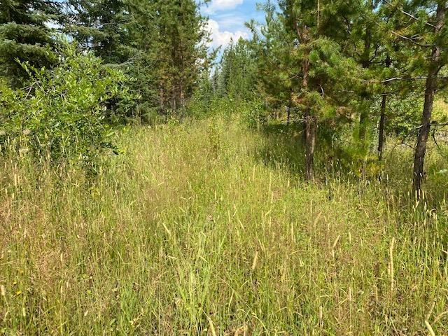Lot for sale in Williams Lake - Rural East, Williams Lake, Williams Lake, 2944 W Big Lake Road, 262629724   Realtylink.org