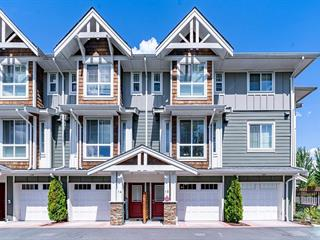 Townhouse for sale in Albion, Maple Ridge, Maple Ridge, 15 9989 240a Street, 262625740 | Realtylink.org