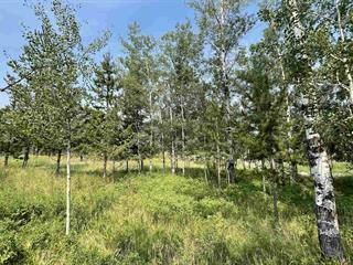 Lot for sale in 100 Mile House - Town, 100 Mile House, 100 Mile House, 306 Sandhill Crescent, 262621396   Realtylink.org