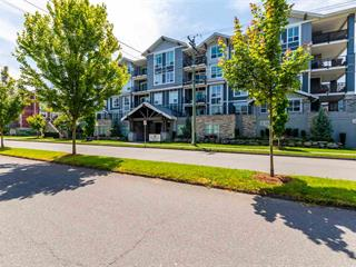 Apartment for sale in Chilliwack W Young-Well, Chilliwack, Chilliwack, 206 45630 Spadina Avenue, 262510838 | Realtylink.org