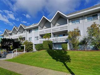 Apartment for sale in Glenwood PQ, Port Coquitlam, Port Coquitlam, 302 2055 Suffolk Avenue, 262504235 | Realtylink.org