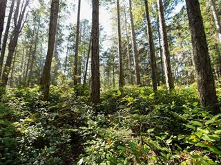 Lot for sale in Comox, Comox Peninsula, Lot 191 Brent Rd, 855702 | Realtylink.org
