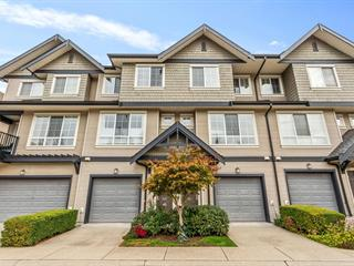 Townhouse for sale in Government Road, Burnaby, Burnaby North, 116 9088 Halston Court, 262647304 | Realtylink.org