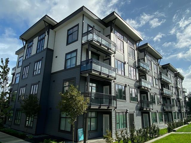 Apartment for sale in Fraser Heights, Surrey, North Surrey, 302 9983 Barnston Drive, 262640450   Realtylink.org