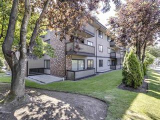 Apartment for sale in Central Coquitlam, Coquitlam, Coquitlam, 308 535 Blue Mountain Street, 262615046 | Realtylink.org