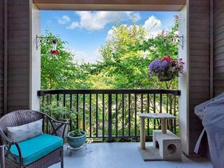 Apartment for sale in Salmon River, Langley, Langley, 214 5655 210a Street, 262618006 | Realtylink.org