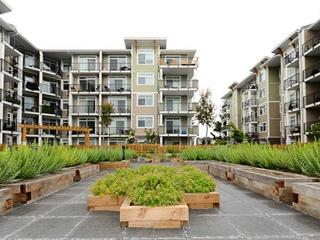 Apartment for sale in Langley City, Langley, Langley, 417 20686 Eastleigh Crescent, 262609128 | Realtylink.org