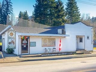 House for sale in Lake Cowichan, Lake Cowichan, 212 South Shore Rd, 862078 | Realtylink.org