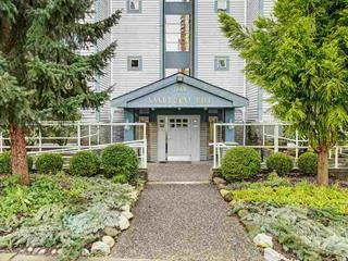 Apartment for sale in South Slope, Burnaby, Burnaby South, 301 7465 Sandborne Avenue, 262548705 | Realtylink.org