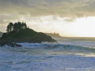 Lot for sale in Tofino, Tofino, 865 Moser Pl, 470723 | Realtylink.org