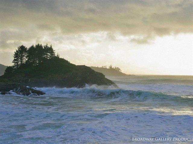 Lot for sale in Tofino, Tofino, 865 Moser Pl, 470723   Realtylink.org