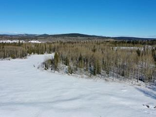 Lot for sale in Horse Lake, 100 Mile House, Dl 4070 Horse Lake Road, 262564963 | Realtylink.org