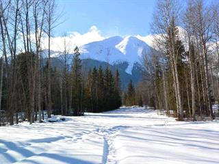 Lot for sale in Smithers - Rural, Smithers, Smithers And Area, 4870 Fredda Road, 262572092   Realtylink.org