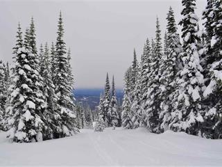 Lot for sale in Smithers - Rural, Smithers, Smithers And Area, 217 Prairie Road, 262567091 | Realtylink.org