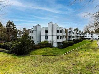 Apartment for sale in Cariboo, Burnaby, Burnaby North, 302 9620 Manchester Drive, 262567838 | Realtylink.org