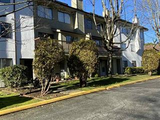 Townhouse for sale in West Newton, Surrey, Surrey, 202 7165 133 Street, 262563557 | Realtylink.org