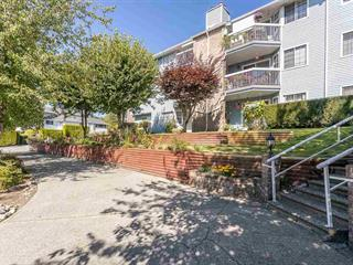 Apartment for sale in East Central, Maple Ridge, Maple Ridge, 117 11510 225 Street, 262563429 | Realtylink.org