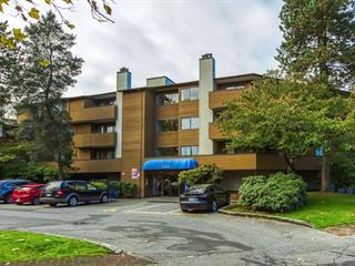 Apartment for sale in Brighouse South, Richmond, Richmond, 336 7293 Moffatt Road, 262564883 | Realtylink.org