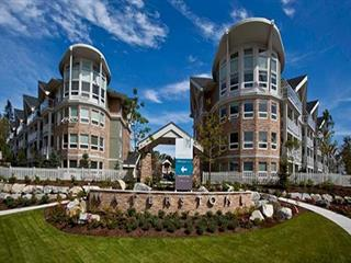 Apartment for sale in Clayton, Surrey, Cloverdale, 219 6440 194 Street, 262564466   Realtylink.org