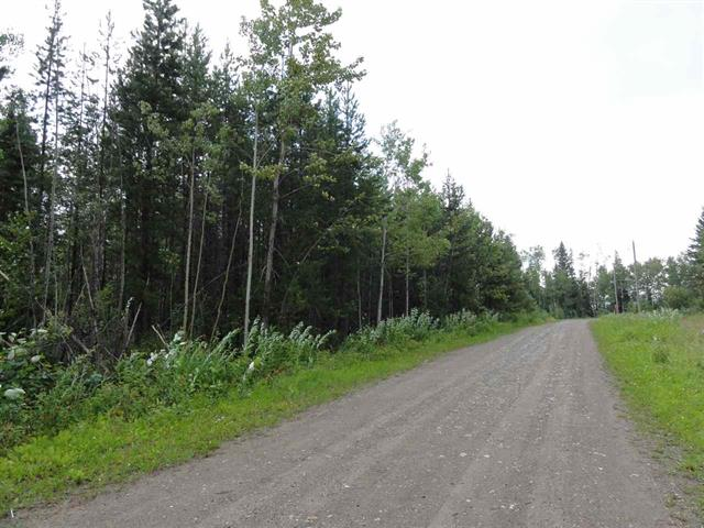 Lot for sale in Shelley, Prince George, PG Rural East, Lot 1 Gladtidings Drive, 262565428 | Realtylink.org