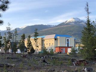 Commercial Land for sale in Valemount - Town, Valemount, Robson Valley, 995 Cranberry Lake Road, 224941677 | Realtylink.org