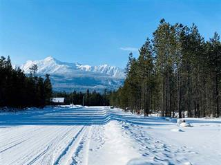 Lot for sale in Valemount - Town, Valemount, Robson Valley, 1190 18th Avenue, 262553756 | Realtylink.org