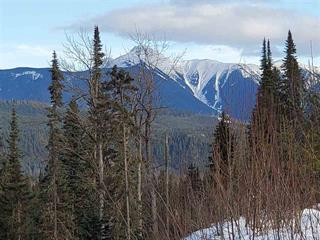 Lot for sale in Dome Creek, Robson Valley, Dl 3272 Dome Creek Road, 262554779 | Realtylink.org