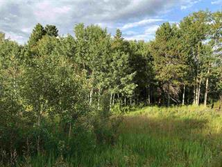 Lot for sale in Williams Lake - Rural West, Williams Lake, Williams Lake, Blk B W Puntzi Airport Road, 262546661 | Realtylink.org