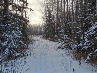 Lot for sale in Lakeshore, Charlie Lake, Fort St. John, 12925 Cherry Road, 262541321 | Realtylink.org