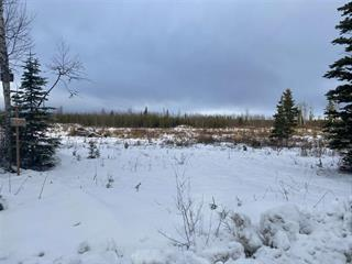 Lot for sale in Blackwater, Prince George, PG Rural West, 8950 Minchin Road, 262545411 | Realtylink.org