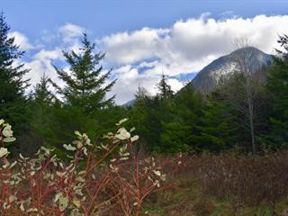 Lot for sale in Bella Coola/Hagensborg, Bella Coola, Williams Lake, Mackenzie 20 Highway, 262537081 | Realtylink.org