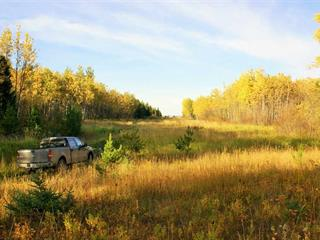 Lot for sale in Salmon Valley, PG Rural North, McLeod Road, 262548597 | Realtylink.org