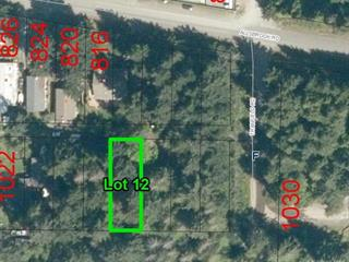 Lot for sale in Errington, Errington/Coombs/Hilliers, 12 Williams St, 864296 | Realtylink.org