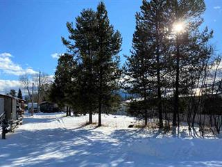 Lot for sale in Valemount - Town, Valemount, Robson Valley, 1145 3rd Avenue, 262562275 | Realtylink.org