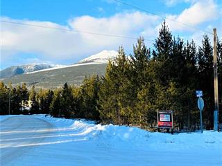 Commercial Land for sale in Valemount - Town, Valemount, Robson Valley, 1285 1st Avenue, 224941786 | Realtylink.org