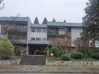 Apartment for sale in East Newton, Surrey, Surrey, 101 13977 74 Avenue, 262561095   Realtylink.org