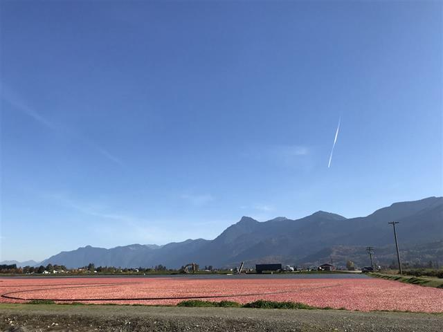 Agri-Business for sale in East Chilliwack, Chilliwack, Chilliwack, 8450 Gibson Road, 224942525 | Realtylink.org