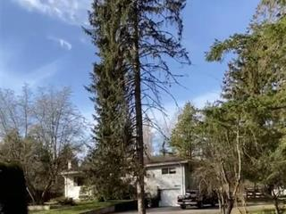 House for sale in Hazelmere, Surrey, South Surrey White Rock, 17641 20 Avenue, 262584483 | Realtylink.org