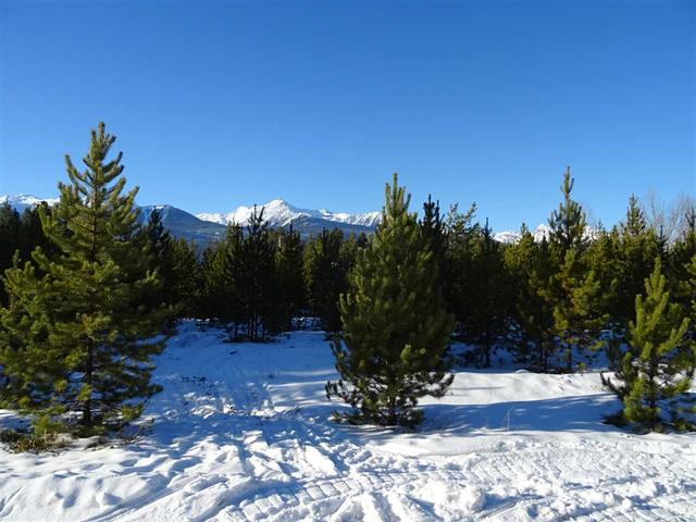 Lot for sale in Valemount - Town, Valemount, Robson Valley, 1923 Cranberry Place, 262578104   Realtylink.org