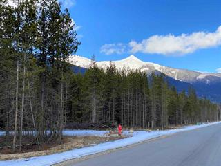 Lot for sale in Valemount - Rural West, Valemount, Robson Valley, 1210 18th Avenue, 262577047 | Realtylink.org