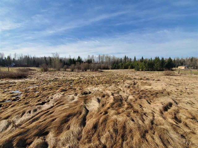 Lot for sale in Red Bluff/Dragon Lake, Quesnel, Quesnel, 1942 W Sales Road, 262576268 | Realtylink.org