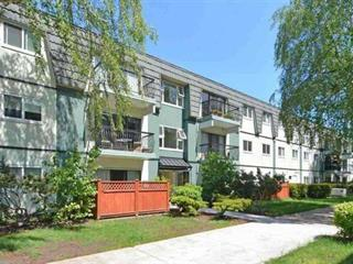 Apartment for sale in South Arm, Richmond, Richmond, 244 8111 B Ryan Road, 262595308 | Realtylink.org