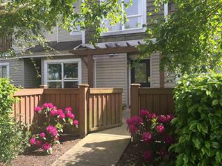 Apartment for rent in Granville, Richmond, Richmond, #9 7088 Lynnwood Drive, 262590624 | Realtylink.org
